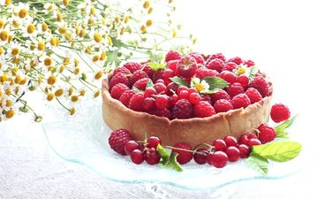 цветы, малина, лето, ромашки, ягоды, пирог, ежевика, смородина