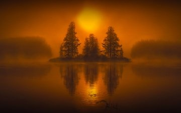 trees, water, lake, sunset, reflection, landscape, fog, hmetosche