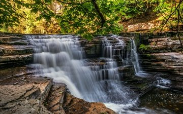 trees, rocks, forest, landscape, waterfall, stream, england, yorkshire