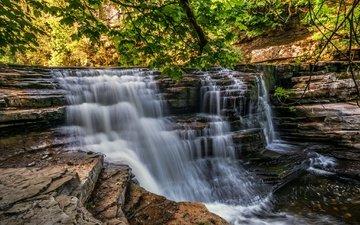 деревья, скалы, лес, пейзаж, водопад, поток, англия, йоркшир