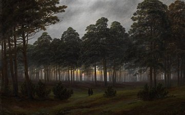 trees, the evening, forest, picture, landscape, caspar david friedrich