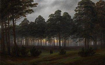 деревья, вечер, лес, картина, пейзаж, каспар давид фридрих