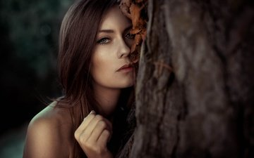 tree, portrait, look, model, shoulders, hair, lips, face, brown hair, carina schätz