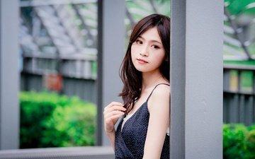 девушка, взгляд, модель, волосы, лицо, макияж, азиатка