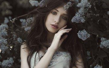 flowering, girl, mood, portrait, look, spring, hair, face
