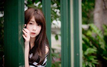 девушка, взгляд, модель, волосы, азиатка