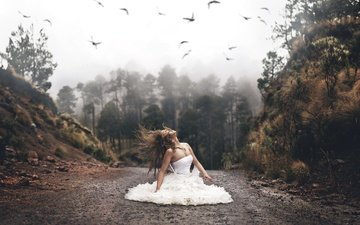 road, forest, girl, mood, dress, the situation, birds, hair
