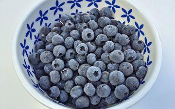фон, иней, ягоды, лесные ягоды, черника, голубика