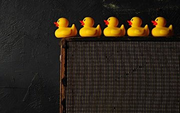 background, wall, black background, toys, ducklings, duck, rubber duck
