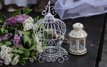 flowers, lantern, bouquet, cell, lilac, still life