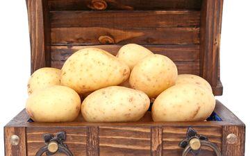 белый фон, овощи, картофель, сундук