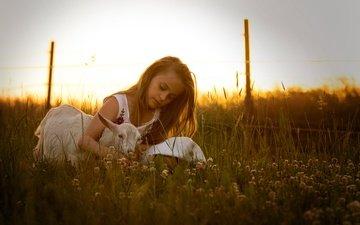clover, girl, meadow, friends, goat
