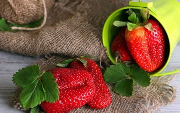 leaves, summer, strawberry, berries, burlap, bucket