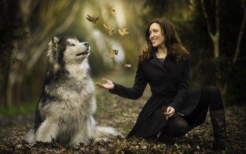 листья, девушка, настроение, улыбка, осень, собака, маламут