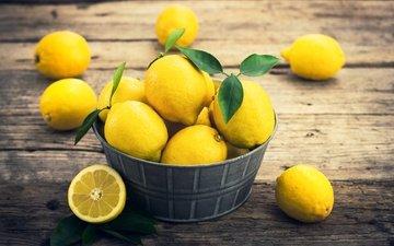 листья, фрукты, лимоны, цитрусы
