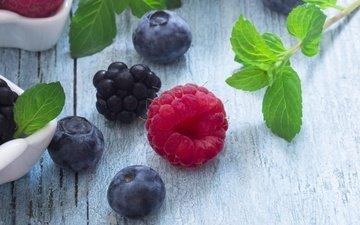 мята, листья, малина, ягоды, черника, ежевика