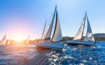 море, яхты, регата