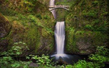 мост, водопад, орегон, ущелье реки колумбия, водопад малтнома, мост бенсона