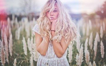 mood, blonde, meadow, hair