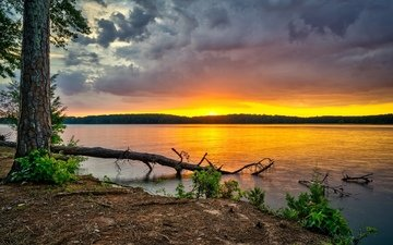 the sky, trees, river, forest, clouds, dawn, usa, georgia, west point lake
