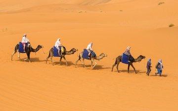 песок, люди, пустыня, бархан, караван, верблюды