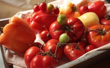 tomatoes, pepper