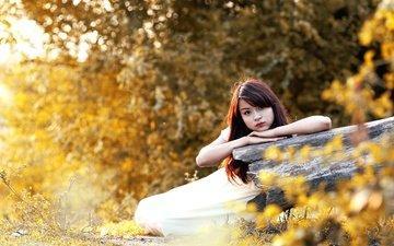 trees, nature, girl, look, autumn, hair, face, asian, bokeh, sunlight