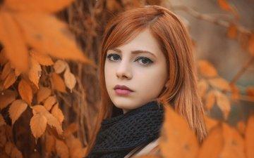 природа, листья, девушка, портрет, ветки, осень, модель, макияж, шарф, arif atlı, melis