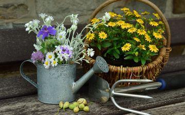 flowers, bouquet, basket, wildflowers, still life, lake