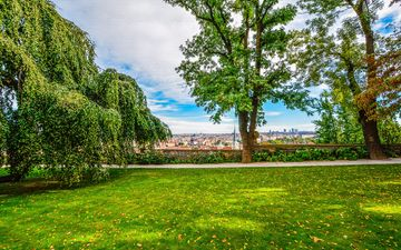 flowers, grass, trees, leaves, landscape, park, the city, plant, prague, lawn, czech republic