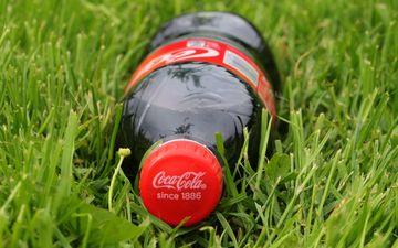 grass, drink, bottle, lawn, coca-cola, cola