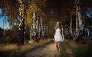road, forest, girl, dress, birch, look, autumn, hair, face
