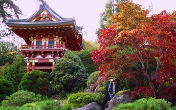 trees, tree, temple, autumn, pagoda, japan, garden, house, architecture