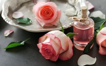 flowers, leaves, roses, petals, oil, aroma, perfume, bottle