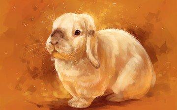 рисунок, фон, мордочка, взгляд, кролик, животное, уши, заяц