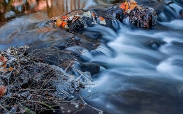 water, river, nature, stones, branches, autumn, ice, for, icicles