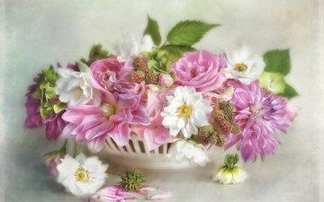 цветы, листья, ветки, рендеринг, ягоды, ежевика, георгины, кашпо