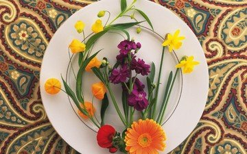 flowers, pattern, daffodils, plate, marigolds, composition, turkish cucumber