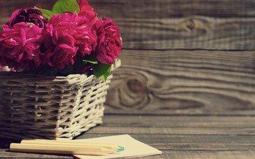 цветы, розы, карандаши, букет, корзинка, композиция, деревянная поверхность