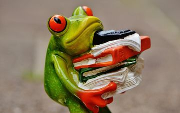 figurine, frog, office, figure, ceramics, calculator, tree frog, folder