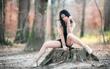 nature, forest, girl, pose, look, autumn, legs, face, stump, sitting, laurent kc, arya