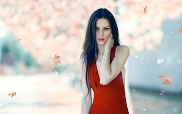 leaves, girl, brunette, look, autumn, model, face, makeup, falling leaves, red dress, alessandro di cicco