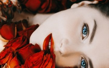 flowers, girl, portrait, roses, look, hair, face, makeup, blue-eyed, red flowers