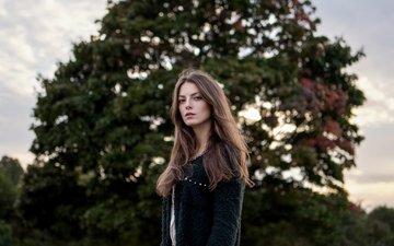 дерево, девушка, взгляд, волосы, лицо, пальто, максим гусельников, polina