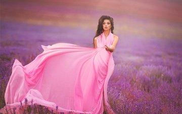 flowers, girl, field, lavender, look, hair, face, pink dress