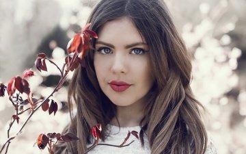 ветка, листья, девушка, портрет, взгляд, осень, модель, лицо, голубые глаза, красные губы, georgina