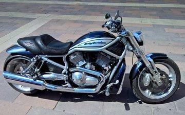 style, leather, bike, motor, moto, chrome, harley, the wheel