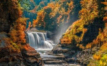 trees, river, rocks, nature, stones, landscape, waterfall, autumn