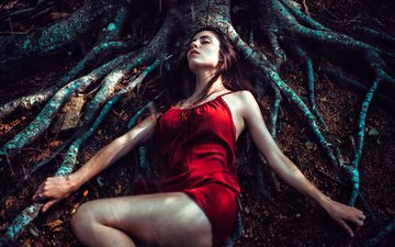tree, forest, girl, dress, sleep, roots, stay