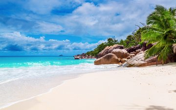 sea, beach, tropics, seychelles